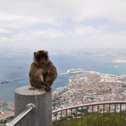 Gibraltar - malý kus Anglie na jihu Španělska