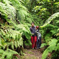 Pohoří Anaga láká návštěvníky Tenerife na jedinečný mlžný prales