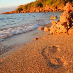 Ostrov Vir – ostrov s příběhem a krásnými plážemi