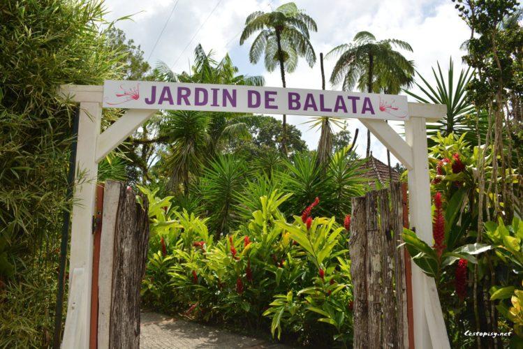 Martinik je ostrovem květin - důkazem toho je zahrada Balata