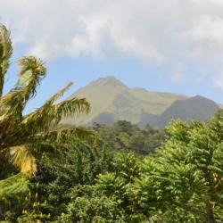 Martinik – základní informace a rady před cestou