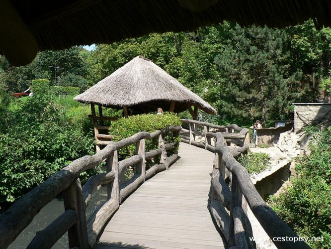 Zoo Jihlava - ráj kočkovitých šelem
