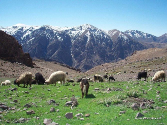 Maroko - Vysoký Atlas - údolí Agoundis