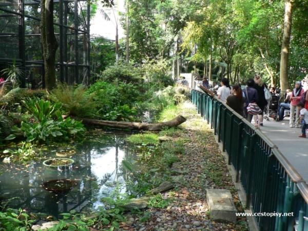 Hongkong Zoo
