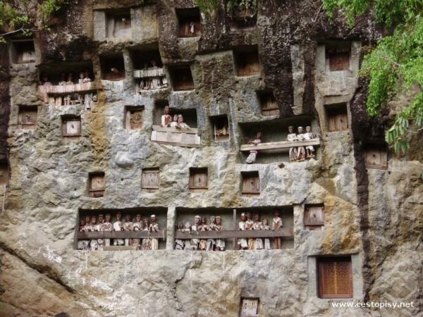 Pohřební sošky Tau Tau Sulawesi
