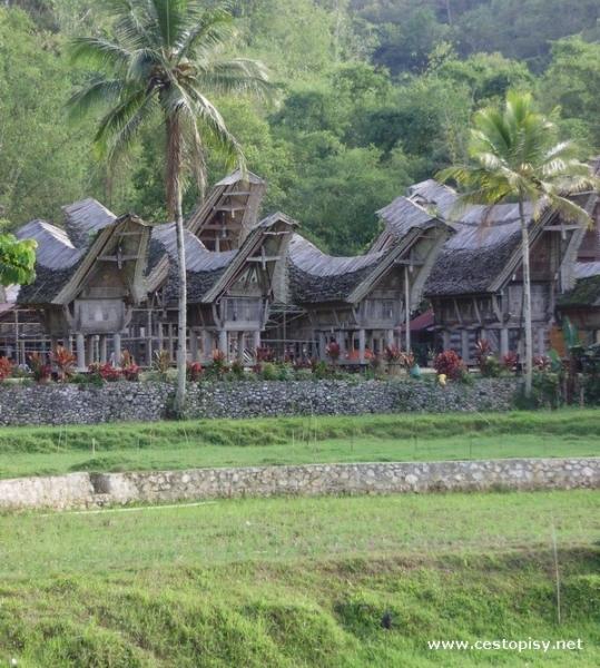 Sulawesi5