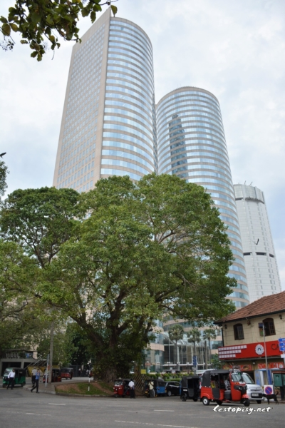 Kolombo