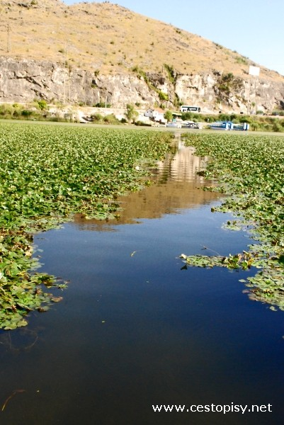 Skadarské jezero