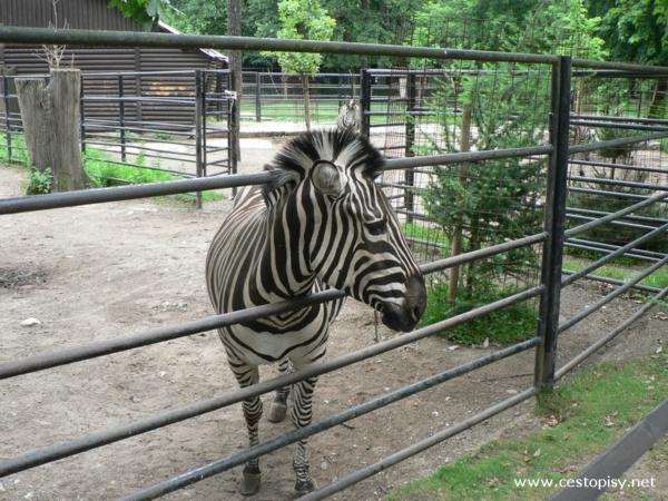 Zoo Hodonín