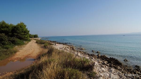 Ostrov Vir